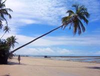 playa en Bahia - Brasil -