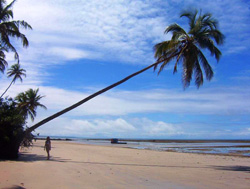 relatos viajeros de brasil - Morro de Sao Paulo -
