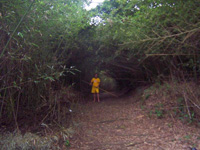 Tunel natural